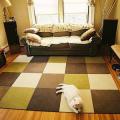 タイルカーペットを畳の上に敷くときに気になる問題点やコツ