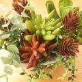 100均のフェイク多肉植物が可愛い♪マネしたくなる飾り方